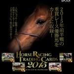 『ホースレーシングトレーディングカード2015 Vol.2』最安値通販ランキング